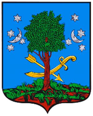 Город Березна