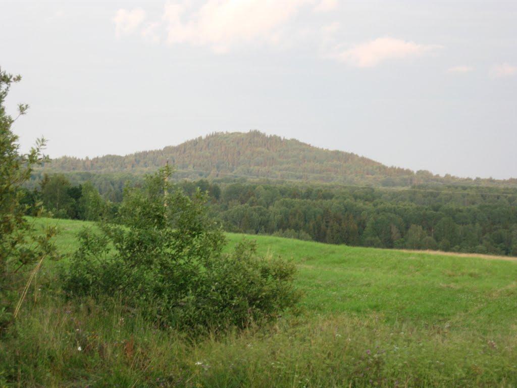 Гора Судома. Высота 293м.
