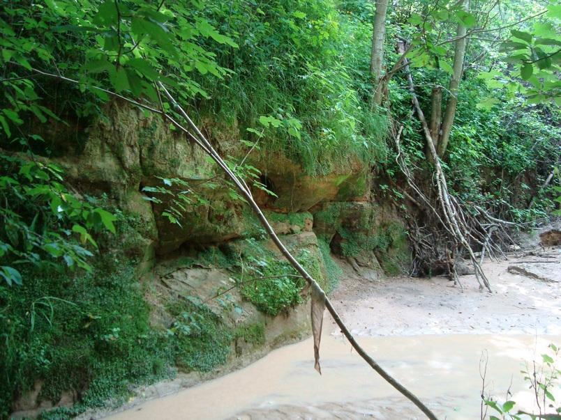 Река Каменец