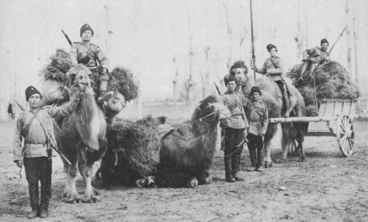 Оренбургские казаки