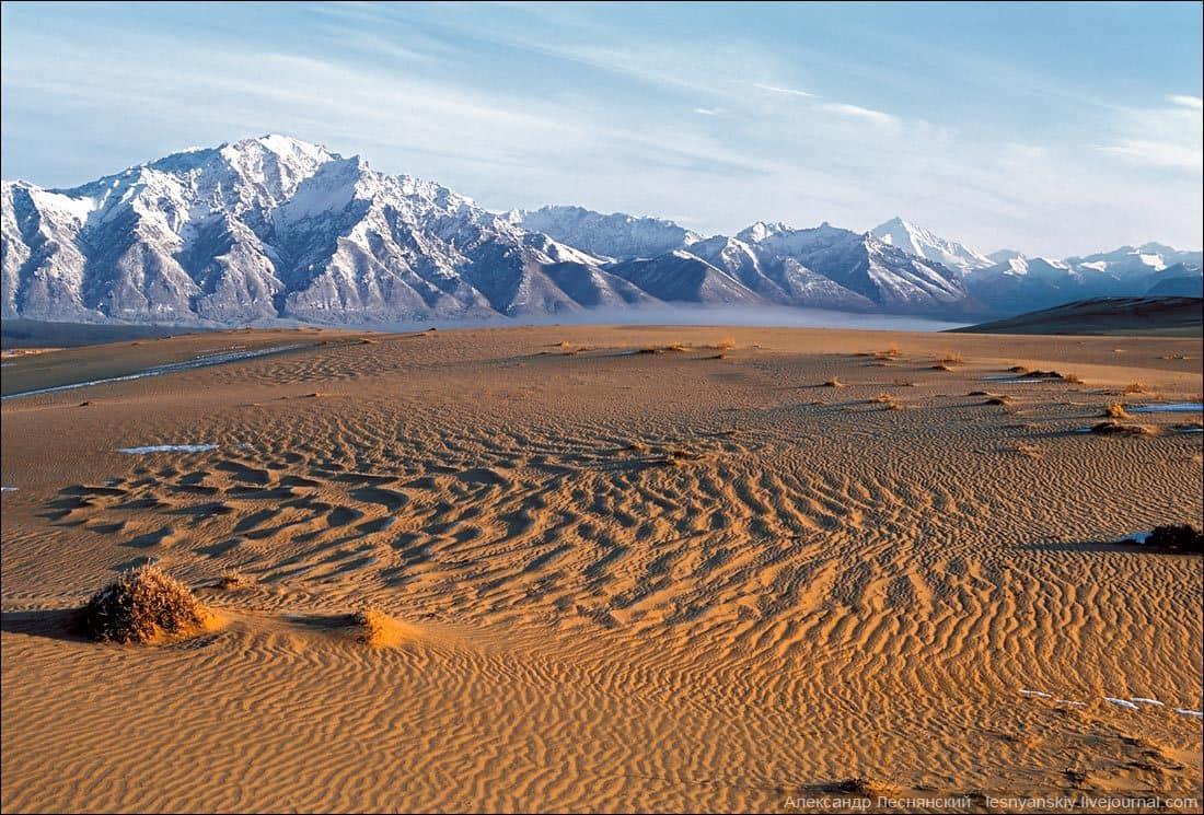 Песчаные поля в сибири