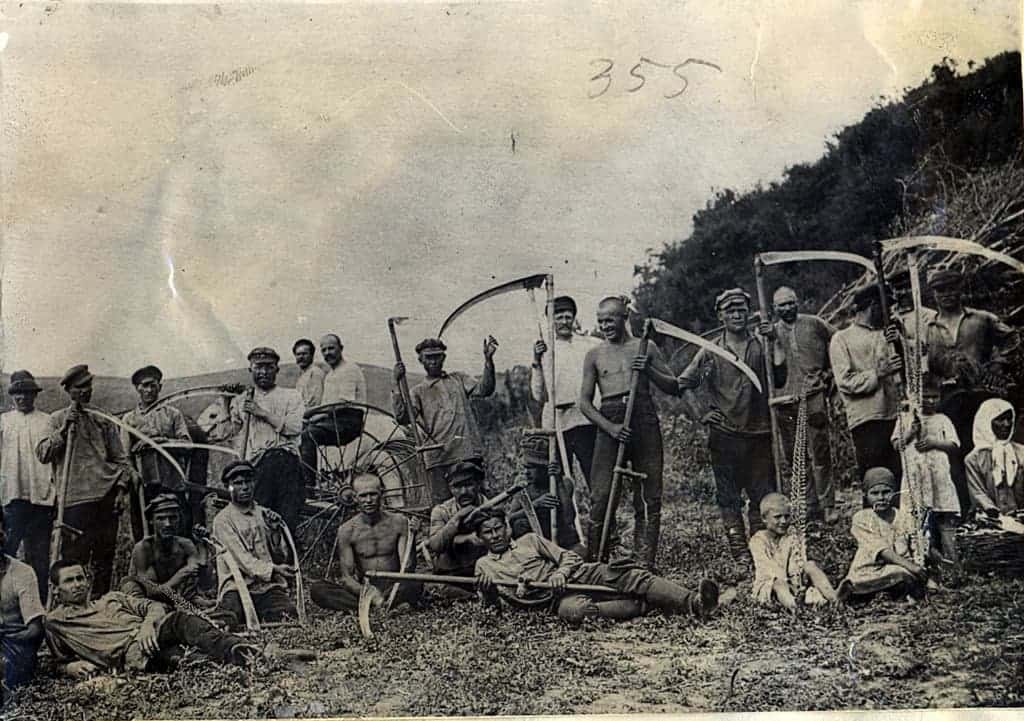 СССР, сенокос в 1950-е годы