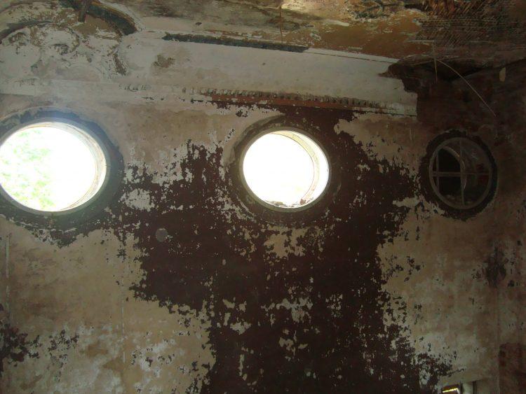 Слуховые окна заднего холла