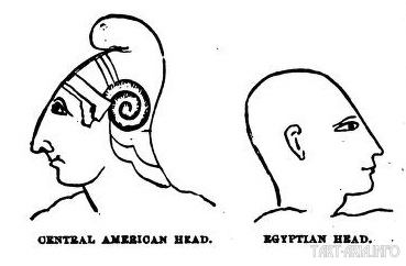 Иллюстрация голов