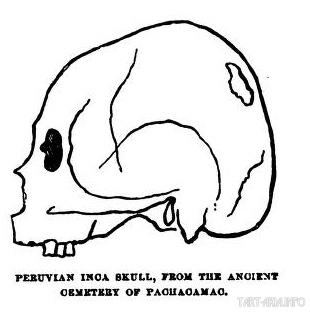 череп инка