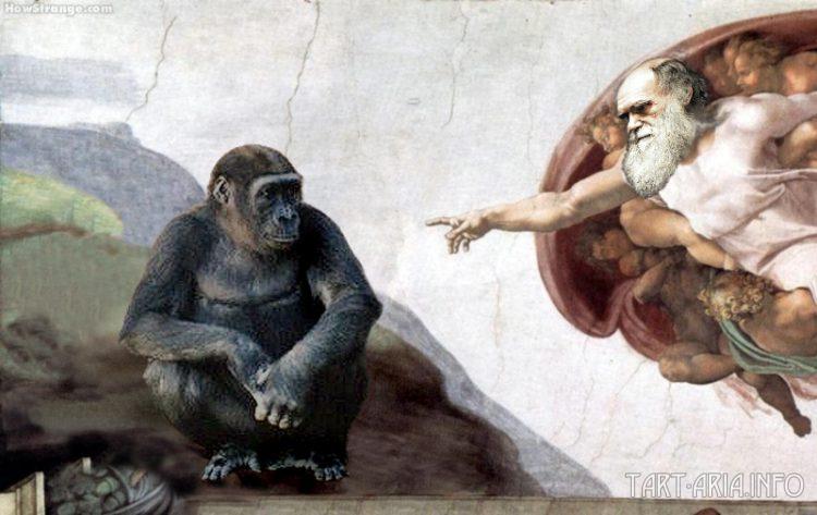 Дарвиновская Обезьяна
