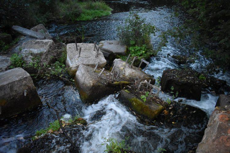 Остатки плотины на реке Истья