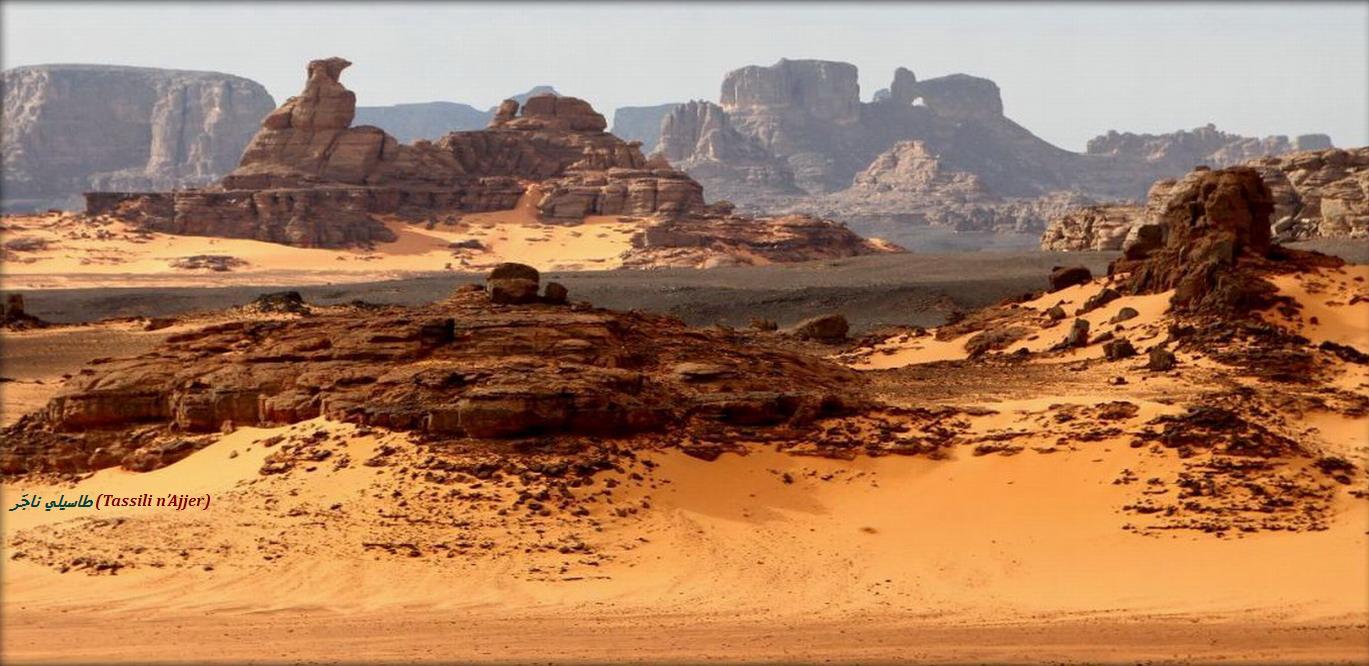 Реальная история Северной Африки и арабского завоевания SKUNK69